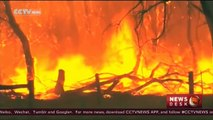 Australian scientists research ways to battle wildfires