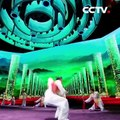 Best of Chinese kung fu from China National Martial Arts Troupe | CCTV English
