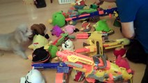 Angry Birds vs Webkinz! Swords vs Guns!