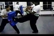 Wing Chun with Terence Yip Wing Chun Kicks Part 9