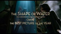 THE SHAPE OF WATER _ Now On Blu-ray & Digital _ FOX Searchlight [720p]