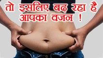 मोटापा बढ़ने का ये कारण जानकर चौंक जाएंगे आप | Actual reason of Weight Gain | Boldsky
