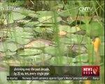 Half Empty ep.5: Remote sensing monitors wetland fluctuations