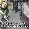 Un homme cambriole un refuge pour animaux pour voler un distributeur de bonbons !