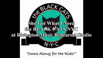 """the BLACK CATS NYC - """"She Got What I Need"""" Live at Rivington Music Studios NYC"""