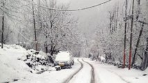 Snowfall in Pahalgam, Jammu and Kashmir, beautiful sight; Watch Video | Oneindia News