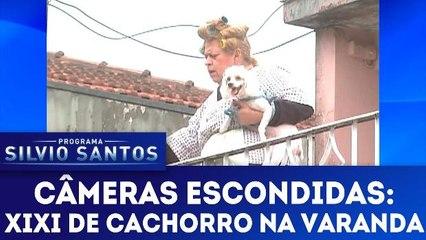 Câmeras Escondidas: Xixi de Cachorro na Varanda - 18.03.18