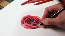 DRAWING A ROSE (How To Draw A Realistic Rose) Time Lapse Drawing by TANKRIUM
