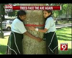 Trees cut for beautification of mall - NEWS9