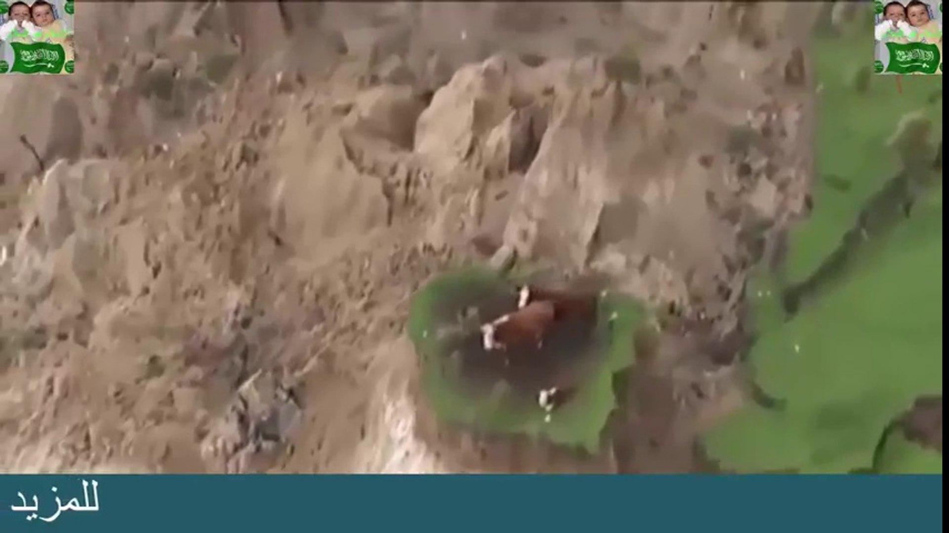 زلزال و خسف خسفَ قرية كاملة إلا هؤلاء سبحان الله الاسلام