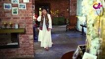 Pakistani Drama | Laal Ishq - Last Episode 27 | Aplus Dramas