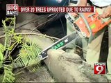 Over 20 trees uprooted due to rains in Bengaluru- NEWS9
