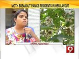 HSR Layout, first of it's kind moth outbreak in Bengaluru- NEWS9