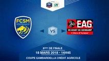 COUPE GAMBARDELLA-CA, 8es de Finale - FC Sochaux-Montbéliard / EA Guingamp - Dimanche 18 Mars à 14h45 (16)