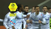 But Jérémy BLAYAC (46ème) / Toulouse FC - RC Strasbourg Alsace - (2-2) - (TFC-RCSA) / 2017-18