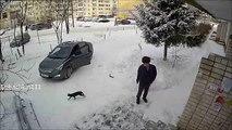 crees que es facil conducir en la nieve mira esto y lo sabras