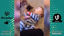 TRY NOT TO LAUGH - Funny Babies Compilation 2018   Funny Kids Fails Videos 2018
