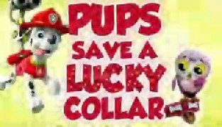 Paw Patrol Pups Save Lucky Collar Paw Patrol Best CARTOONS F