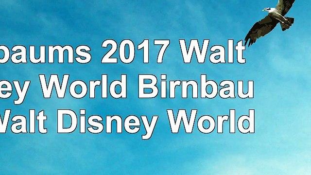 Birnbaums 2017 Walt Disney World Birnbaums Walt Disney World 0142a419