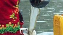 Türkiye dünya ülkelerine 'can suyu' taşıyor - İSTANBUL