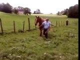 Moa et Whisky qui court dans un champs