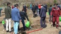 Denetimli Serbestlik Müdürlüğü, şehitler için hatıra ormanı oluşturdu