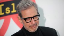 'Isle of Dogs' Is Jeff Goldblum's Third Wes Anderson Film