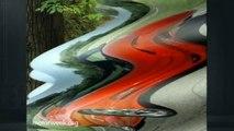 1998 Pontiac Trans Am WS6 | MotorWeek Retro