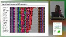 Aurélie Bonin : la sixième extinction, l'ADN environnemental un moyen d'évaluer la biodiversité