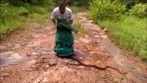 Cet homme libè des centaines de serpent et plonge les mains dans le tas... Dingue