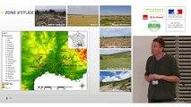 """Rencontre """"Toitures végétalisées et biodiversité"""" - Thierry DUTOIT (CNRS - IUT Avignon)"""