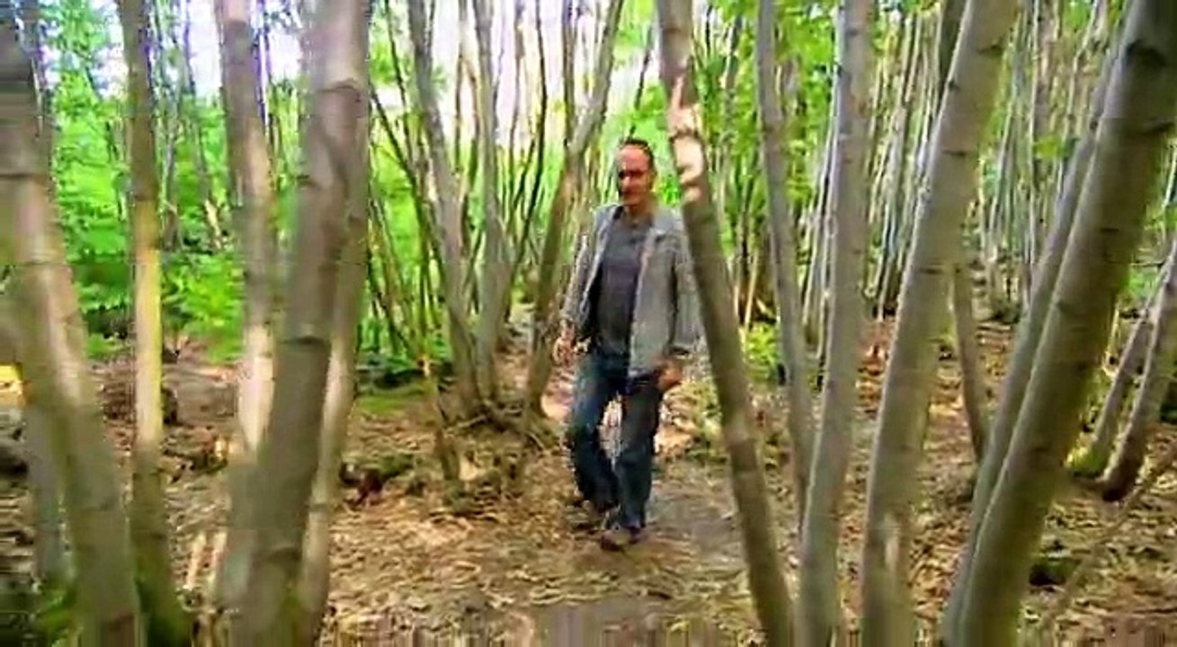 Grand Designs S09 E13 2nd Revisit Sussex The Woodsmans Cottage Revisited From S3 Ep3 S5 Ep8 Video Dailymotion
