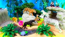 Zoo Toy Animal I Wild Animal Toys I Tigers Panther Jungle Book Kids learn animals in English