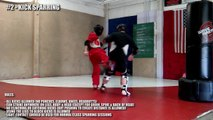 How to Spar in Taekwondo Kickboxing | Sparring Types
