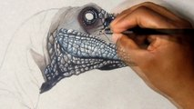 Drawing Velociraptor - Jurassic world | Realistic Drawing