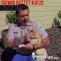 Fatmir rettet eine Miete Katze vom 6ten Stock. Wenn ein Albaner eine Katze retten würde.Luan Comedy
