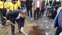 Esenyurt'ta  Denetimli serbestlik hükümlüleri ağaç dikti