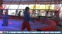 Le cirque Pinder s'installe à Marseille avec un tout nouveau spectacle