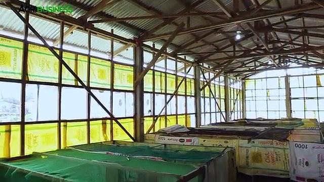 Quail farming, egg production and marketing | Quail farming Part 4 #Agribusiness