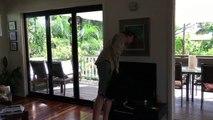 Six-Foot Carpet Python Under TV