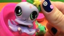 Marine animals Litlest Pet Shop LPS eggs with a surprise Les animaux marins LPS avec une surprise