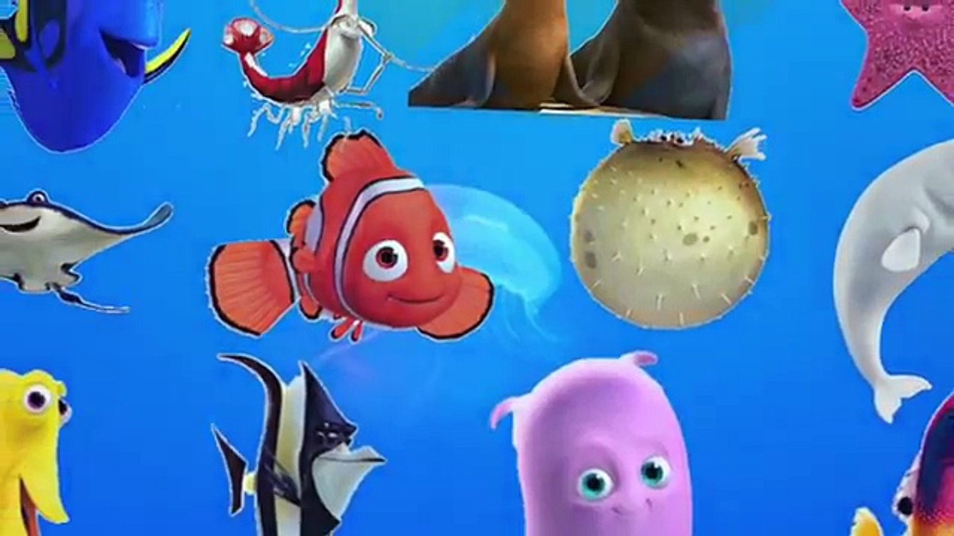 LEARN SEA ANIMALS & WATER ANIMALS NAMES AND SOUND REAL OCEAN SOUND ANIMAL VIDEO FOR KIDS PART 4
