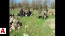 Mardin'de terör örgütü PKK�ya ait çok sayıda silah ve patlayıcı ele geçirildi