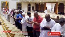 Quran Recitation Really Beautiful Amazing 2018 _ Soft Recitation by Sheikh Yaseen __ AWAZ Quran Recitation Really Beautiful Amazing 2018 ,  Soft Recitatiquran recitation really beautiful amazing crying, quran recitation really beautiful, interrogation on b