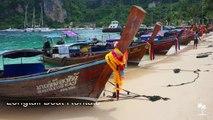 Ko Phi Phi Le Island, Thailand - Phi Phi Island, Maya Bay, Pileh Lagoon, Viking Cave - Phuket, Krabi