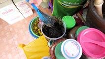 EXOTIC LAO FOOD - Bile Meat Laap, Green Banana Salad & Raw Duck Blood in Vientiane, Laos!