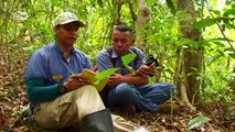 Kolumbien: Schutz des Tropenwaldes   Global 3000