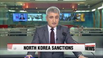 UN Security Council blacklists dozens of ships, businesses over North Korea smuggling
