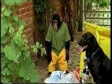 Il nostro amico Charly 16x19 - Charly e gli orsetti lavatori