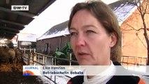 Büffel-Mozzarella aus Brandenburg   Video des Tages